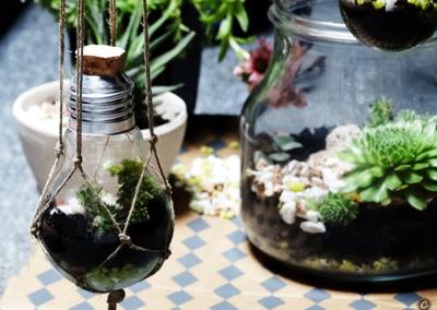 Ogródek w żarówce