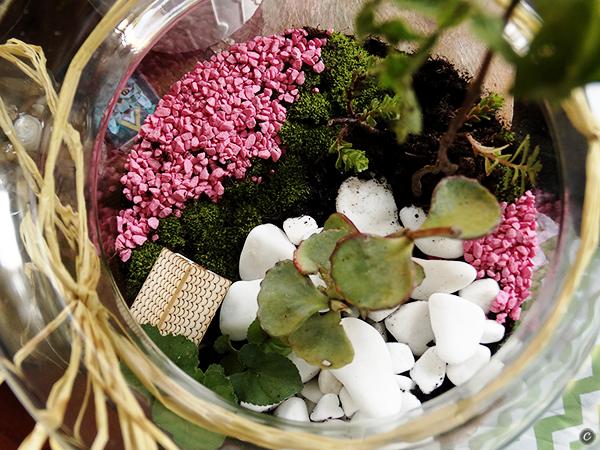 Ogródki I Lasy W Szkle I Caramel Warsztaty I Eventy Artystyczne