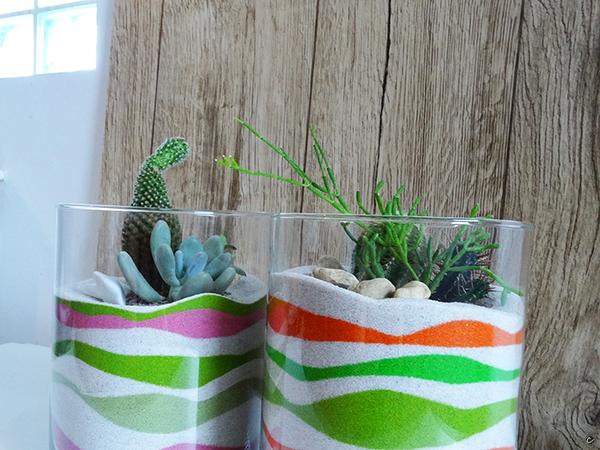 terrarium roślinne