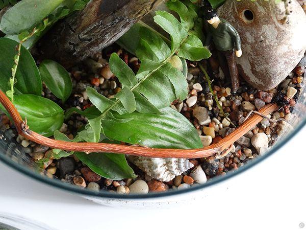 lasy w szkle caramel warsztaty online